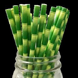Kağıt Pipet Bambu