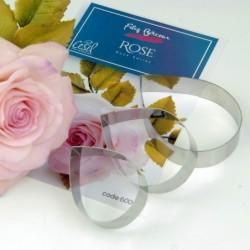 Filiz Bircan Englısh Rose...