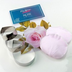 Filiz Bircan Englısh Rose Set