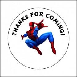 Sticker 12 Li Örümcek