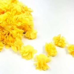 Şerit Çiçek 1 Mt Sarı
